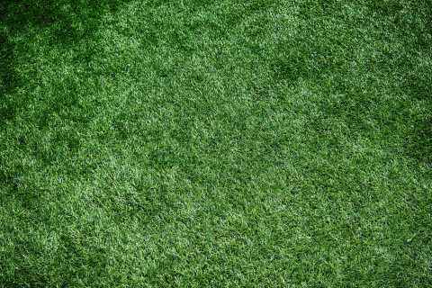 <b>Artificial Grass</b> Fitters